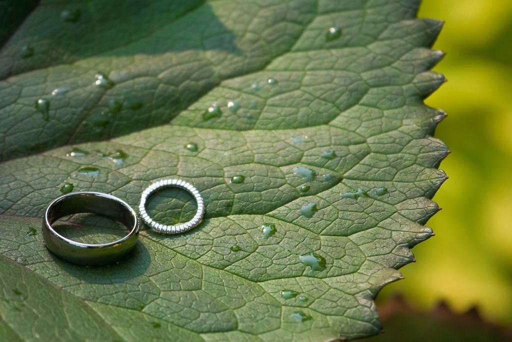 Rings ⋅ Wedding, New York City ⋅ 2007