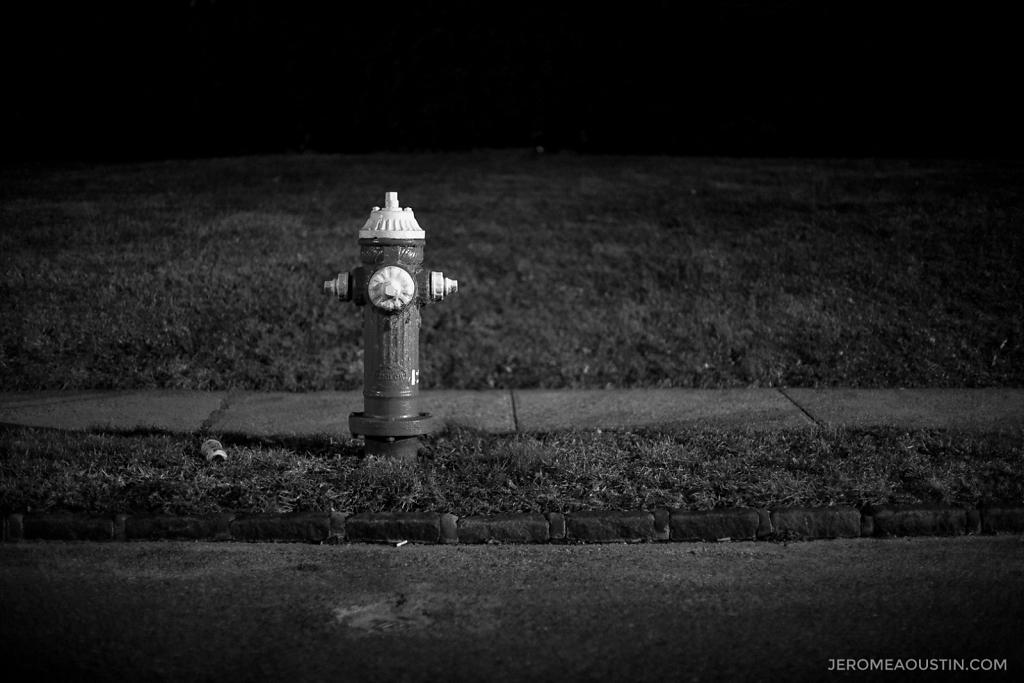 Fire Hydrant ⋅ Fleetwood, NY ⋅ 2010