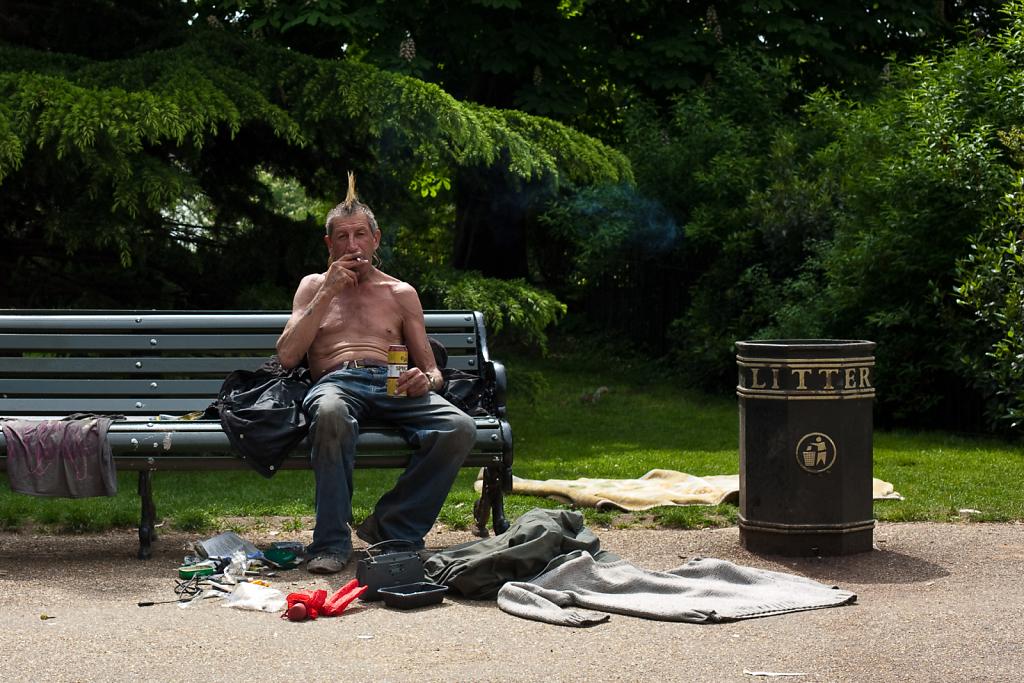 God Save The Punk ⋅ Hyde Park, London ⋅ 2010